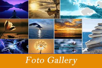 gallery360-belMT33